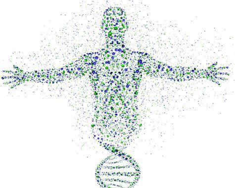 Find A Pharmacogenetics Testing Company
